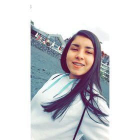 Karen Viviana Bravo Aguila