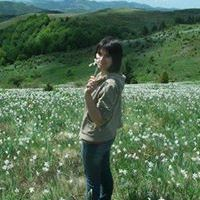 Codrin Elena