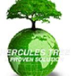 Hercules Tree Service