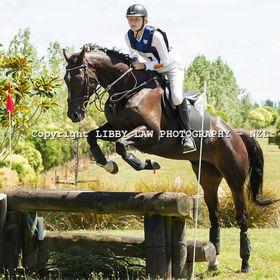Hanny Horse