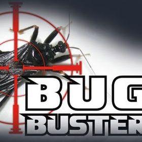 Bug Buster Ro