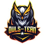 Owls Team - Make Your Life Defferent