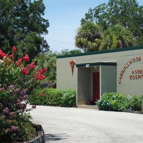 Carrollwood Community Animal Hospital