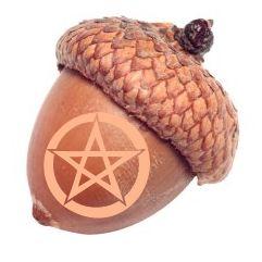 Pagan Acorns