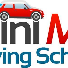 Mini me driving school