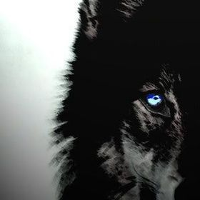 eoghan silverwolf