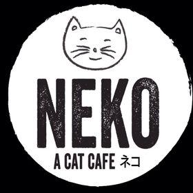 NEKO Cat Cafe Seattle (nekocatcafeseat) on Pinterest