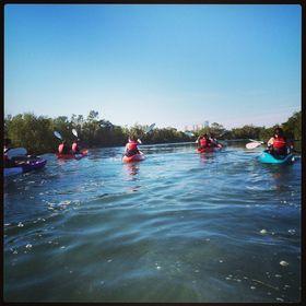 Sea Hawk Water Sports