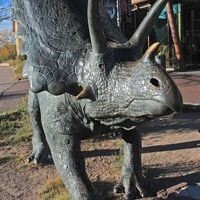 NM Museum of Natural History and Science