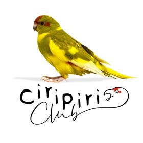 Ciripiri Club