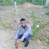 Hamisi Mwagwaya