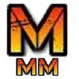 Macro And Micro Motors