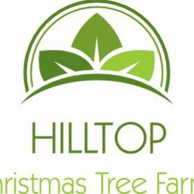 Hilltop Christmas Tree Farms