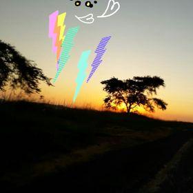 Bets van Vuuren