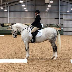 Team Tunnah Equestrian - Award Winning Blog