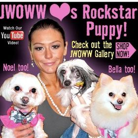 Rockstar Puppy Boutique
