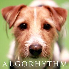 ALGORHYTHM (アルゴリズム)