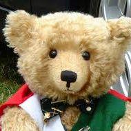 Ginos Bears