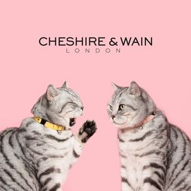Cheshire & Wain