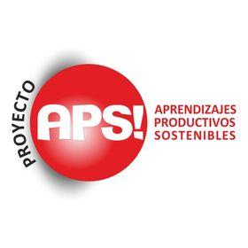 Proyecto APS