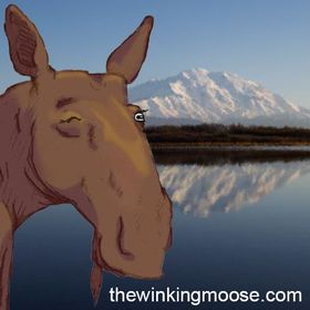 The Winking Moose