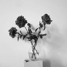 Studio Amanda Rodriguez