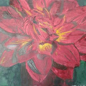 Waterlily Taratahi Ruby