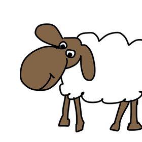 Kazik Owca