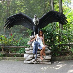 Jherandyne Castillo