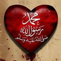 Mostafa Abd-elkreem