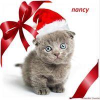 Nancy Van Leemput
