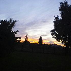 Aria Hill