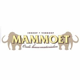 Mammoet Oude Bouwmaterialen