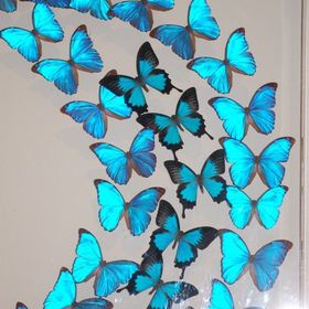 Methodical Black Butterfly Rattan Refrigerator Decorative Wall Paste Toilet Paste Waterproof Pvc Wall Paste Home Decor Home & Garden