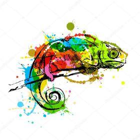 kolororowykameleon