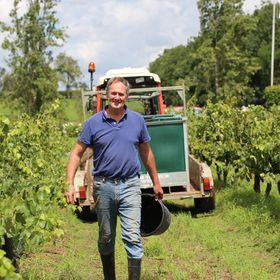 Keith Tulloch Wine