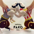 PAKO toys
