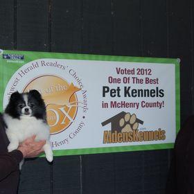World Class Dog Kennels