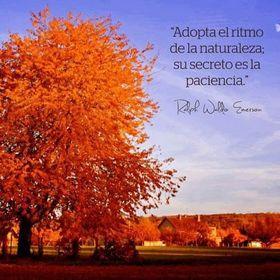 Eliana Paredes Peña