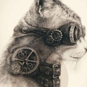 Lokey The Kitty