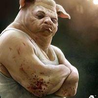 Porco Maledette