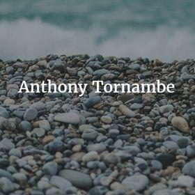Anthony Tornambe (AnthonyTornambe) on Pinterest