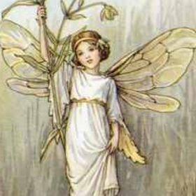 fairy concepts