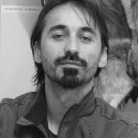 Stefan Carare