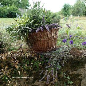 Un Cottage En France (Colette Malpaud)