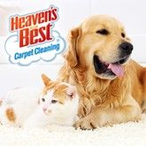 Heaven's Best Carpet Clean Mason City IA