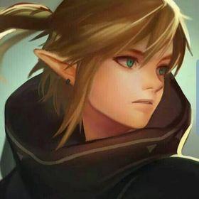 Link Hyrule