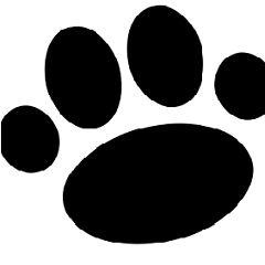 Dogs N' Stuff  Dogs Tips  Dog Tricks  Dog Training Manuals