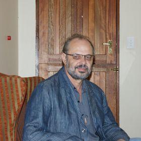 Johan Kok