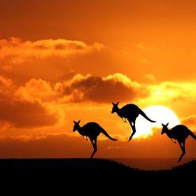 Emigrar a Australia YA